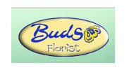 Buds Plants Bouquets And Flowers